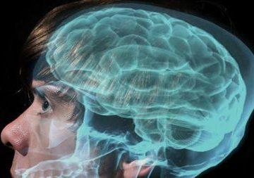 Ricerca e formazione: come proteggere il cervello dall'invecchiamento