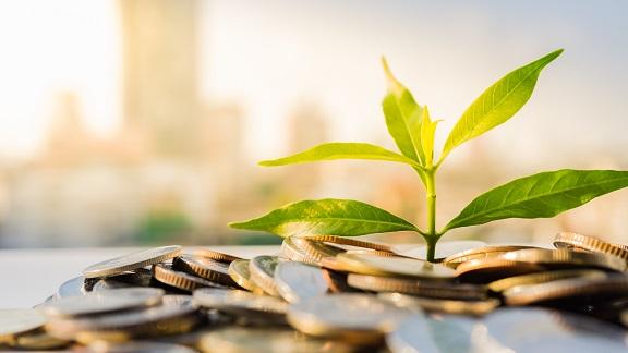 lavoro nella green economy