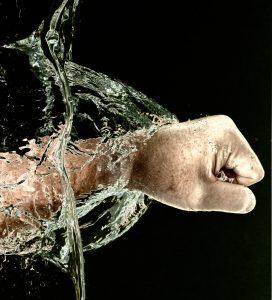 dinamica dei fluidi