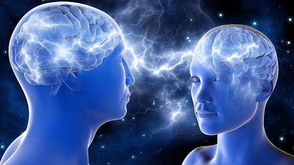 libri sulle neuroscienze